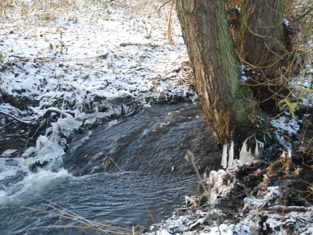 Bubbling River Chet
